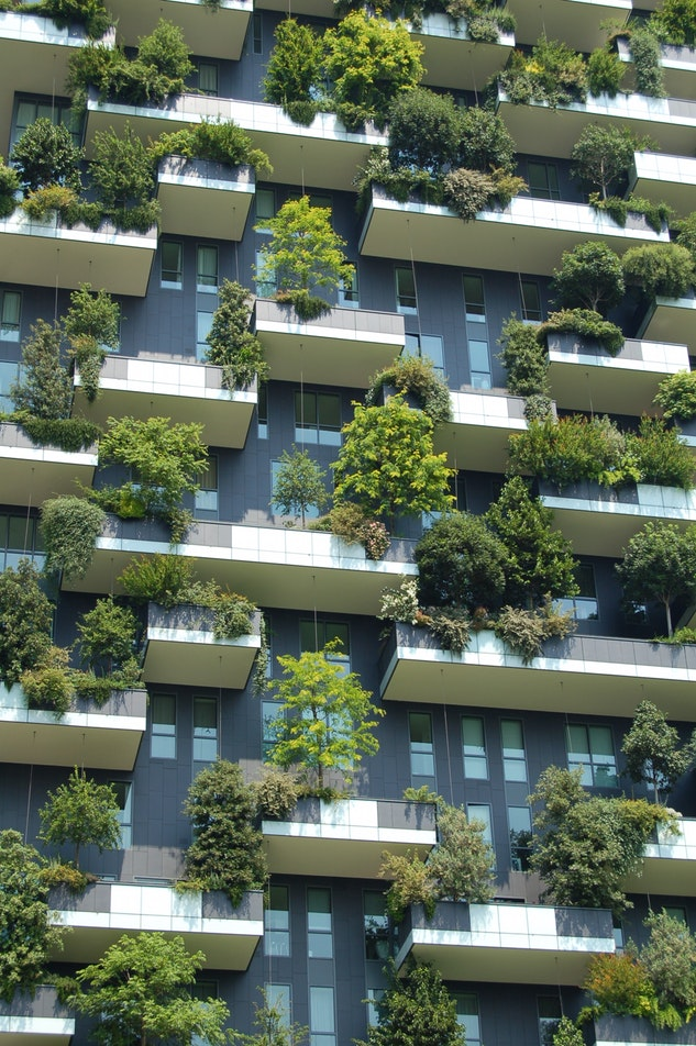 Des végétaux sur une façade à Milan (Italy)