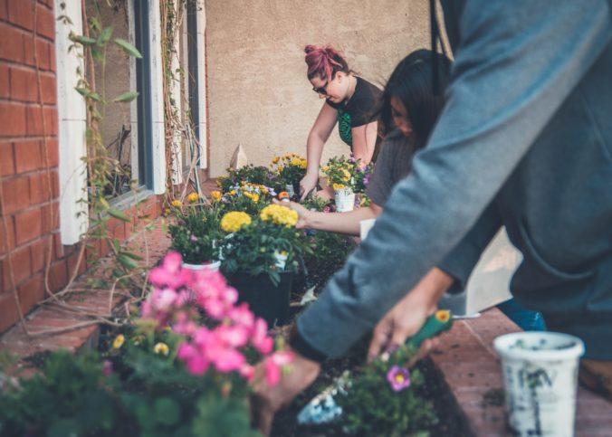 Une famille en train de jardiner