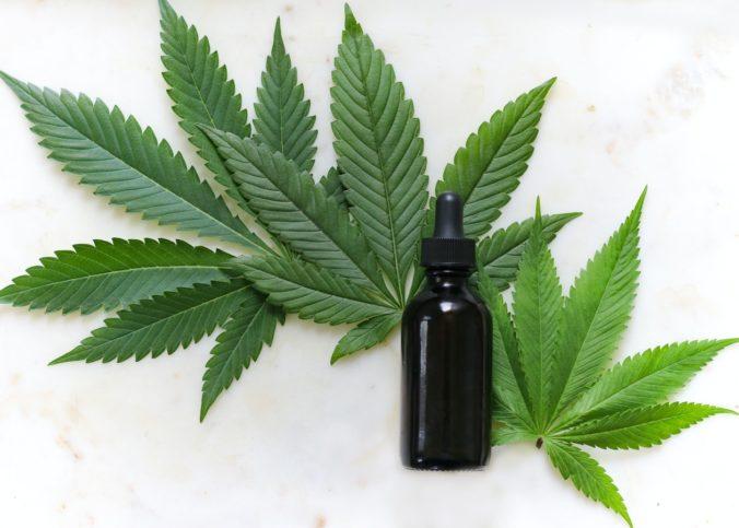 Selon une récente étude du Medical College of Georgia (MCG) de l'Augusta University, le cannabis pourrait considérablement réduire les lésions pulmonaires causées par la Covid-19.